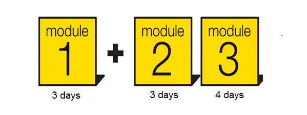 Diagram Showing 3 modules of the NLP Practitioner Training